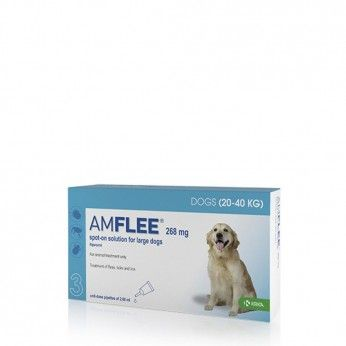 Amflee Spot On 268 mg Cães 20-40 kg 3 Pipetas